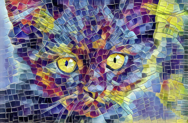 Digital Art - Kitten Mosaic by Don Northup