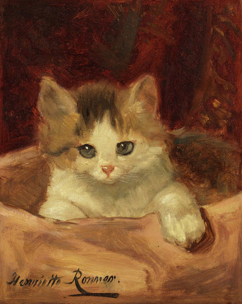 Crazy Cat Painting - Kitten On A Pink Cushion by Henriette Ronner-Knip