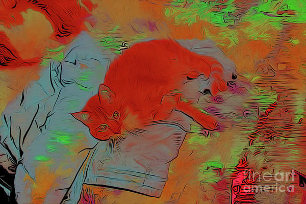 Wall Art - Digital Art - Kitty Cat Relaxes 4 by Chris Taggart