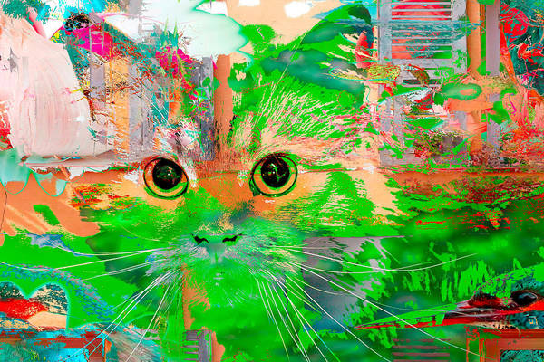 Digital Art - Kitty Collage Green by Don Northup