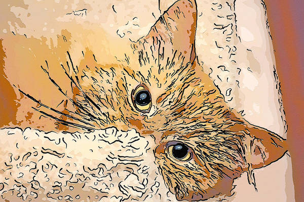 Digital Art - Kitty Peeking by Don Northup