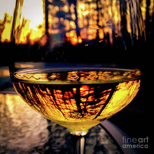 Photograph - Sunset In A Glass by Atousa Raissyan