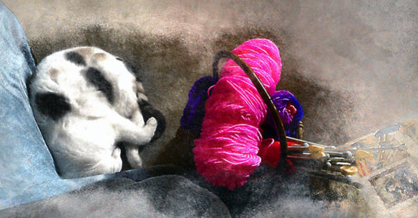 Knitting Digital Art - Knit 2, Curl, Purrl 2 by Carmen Hathaway