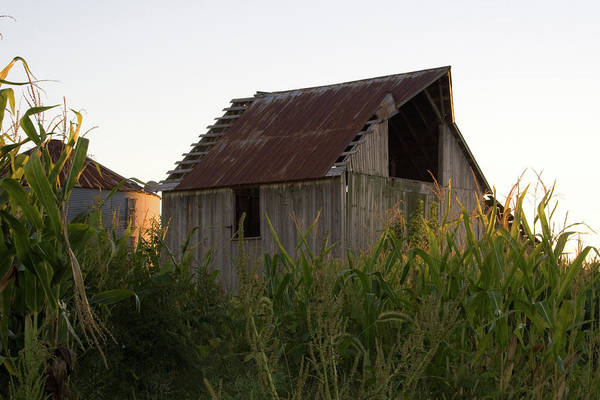 Photograph - Knox Barn by Dylan Punke