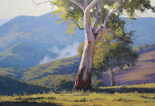 Australian Art Painting - Koala In The Tree by Graham Gercken