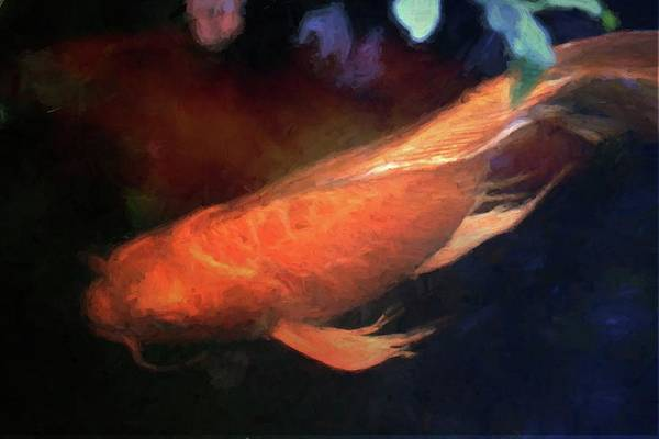 Photograph - Koi Abstracted by Alice Gipson