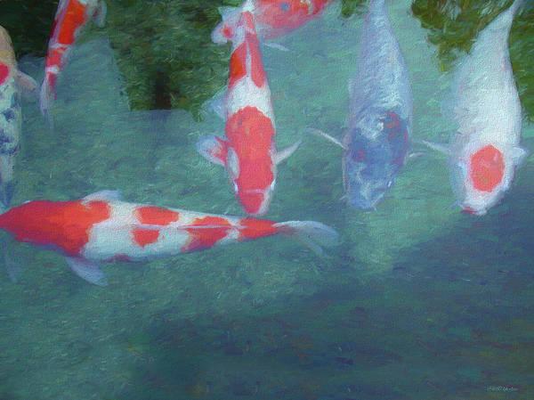 Painting - Koi Fish - Painting by Ericamaxine Price