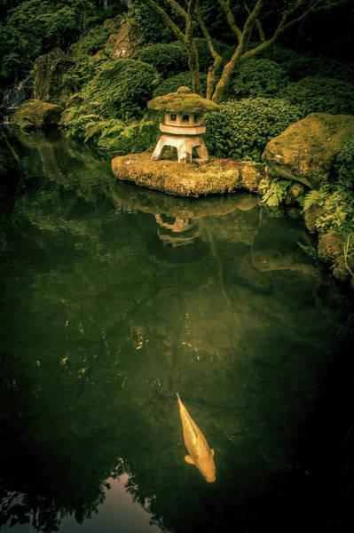 Wall Art - Photograph - Koi In Pond At Portland Japanese Garden by Art Spectrum