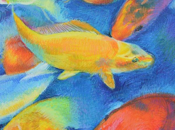 Primary Colors Drawing - Koi Modular 2 by Aletha Kuschan