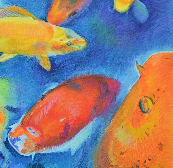 Primary Colors Drawing - Koi Modular 3  by Aletha Kuschan