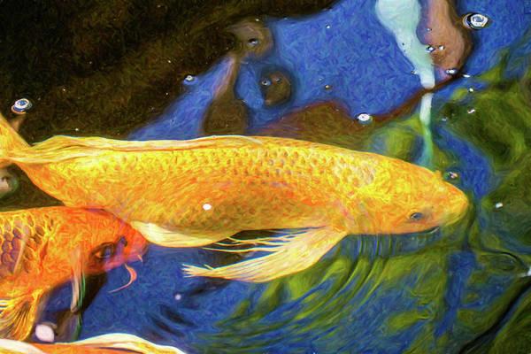 Digital Art - Koi Pond Fish - Best Friends - By Omaste Witkowski by Omaste Witkowski