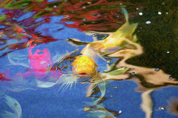 Digital Art - Koi Pond Fish - Friendly Enemies - By Omaste Witkowski by Omaste Witkowski