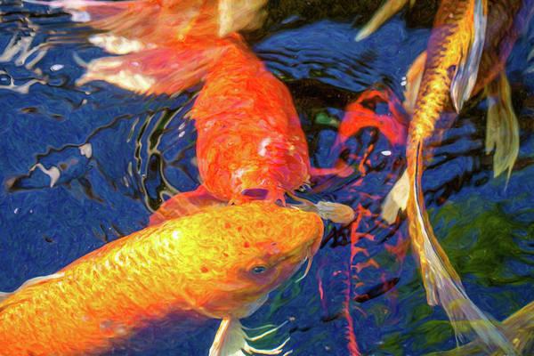Digital Art - Koi Pond Fish - Kissing Sunshine - By Omaste Witkowski by Omaste Witkowski