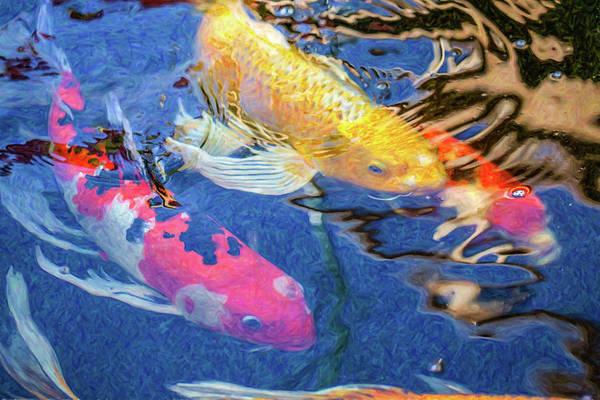 Digital Art - Koi Pond Fish - Making Plans - By Omaste Witkowski by Omaste Witkowski