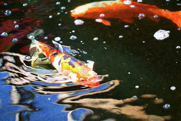 Digital Art - Koi Pond Fish - Making Waves - By Omaste Witkowski by Omaste Witkowski