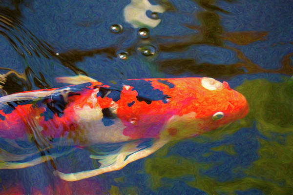 Digital Art - Koi Pond Fish - Painted Dreams - By Omaste Witkowski by Omaste Witkowski