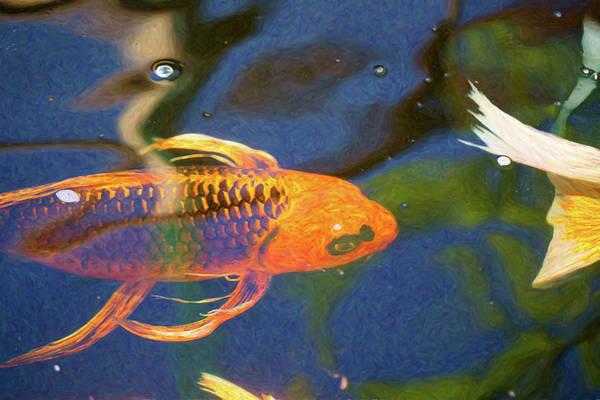 Digital Art - Koi Pond Fish - Picasso's Pets - By Omaste Witkowski by Omaste Witkowski