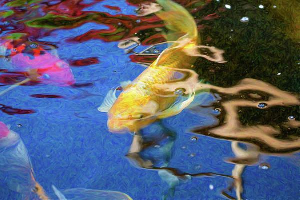 Digital Art - Koi Pond Fish - Playful Energies - By Omaste Witkowski by Omaste Witkowski