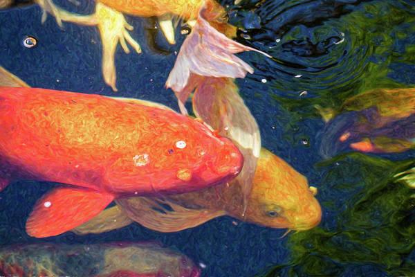 Digital Art - Koi Pond Fish - Pretty In Pink - By Omaste Witkowski by Omaste Witkowski