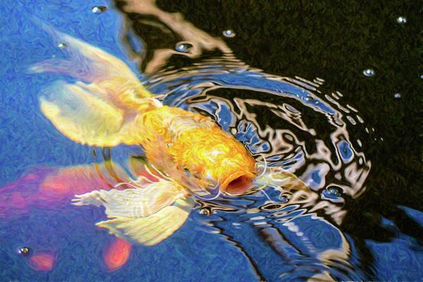 Digital Art - Koi Pond Fish - Pretty Pucker - By Omaste Witkowski by Omaste Witkowski