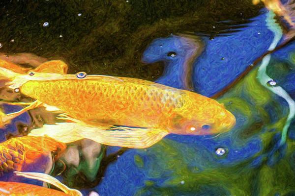 Digital Art - Koi Pond Fish - Winning Moves - By Omaste Witkowski by Omaste Witkowski