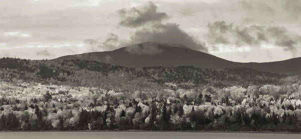 Photograph - Kokadjo Maine Black And White Landscape by Dan Sproul