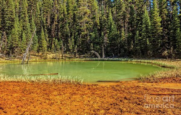 Wall Art - Photograph - Kootenay National Park Paint Pots by Robert Bales