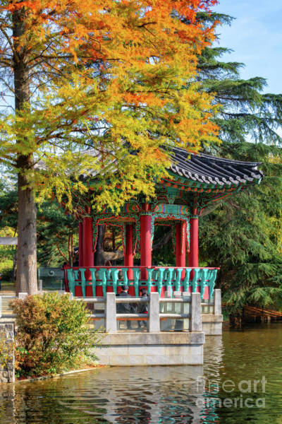 Pavilion Photograph - Korean Garden In Autumn by Delphimages Photo Creations