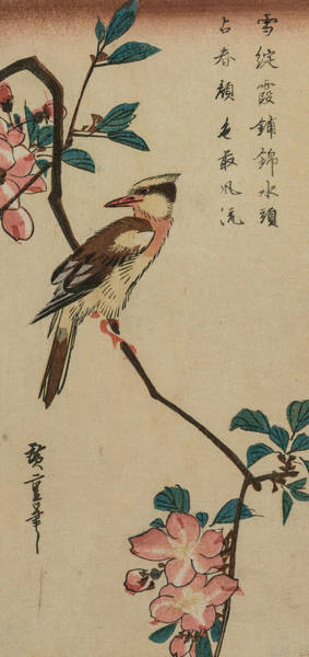 Relief - Korean Nightingale On Cherry Branch by Utagawa Hiroshige