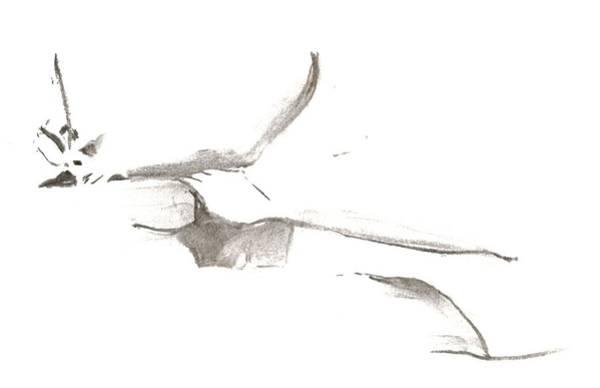 Drawing - Kroki 2014 03 22 F11 by Marica Ohlsson