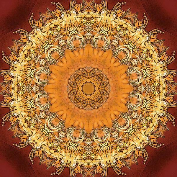 Digital Art - Kryddad Hunang by Frans Blok