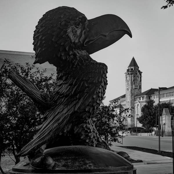 Photograph - Ku Jayhawk And Lawrence Kansas Campus Architecture Black And White by Gregory Ballos