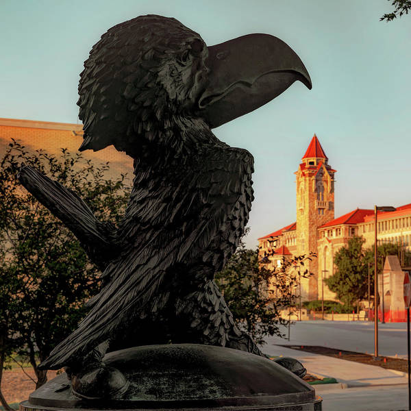 Photograph - Ku Jayhawk And Lawrence Kansas Campus Architecture by Gregory Ballos