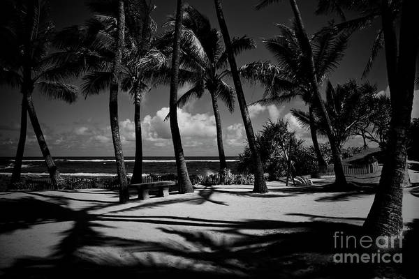 Photograph - Kuau Beach Palm Trees Paia Maui Hawaii by Sharon Mau