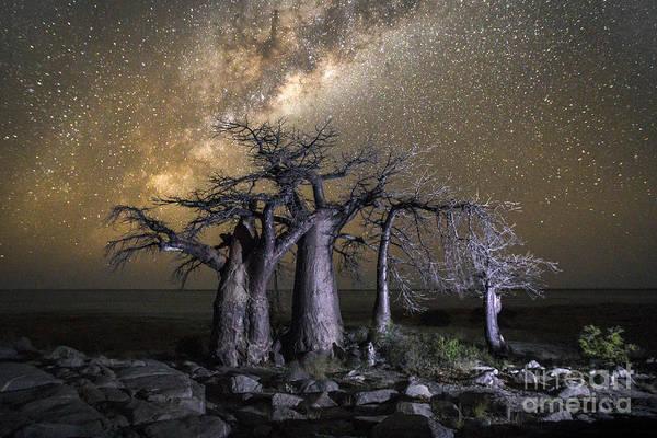 Dusk Wall Art - Photograph - Kubu Island In Botswana by 2630ben