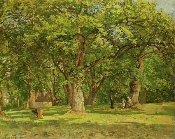Wall Art - Painting - La Foret, Forest by Camille Pissarro
