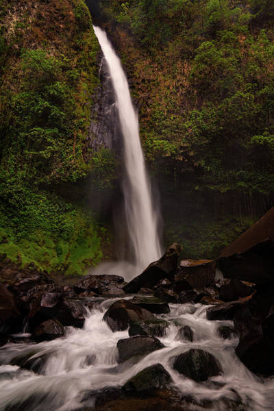 Photograph - La Fortuna Waterfall by Darylann Leonard Photography