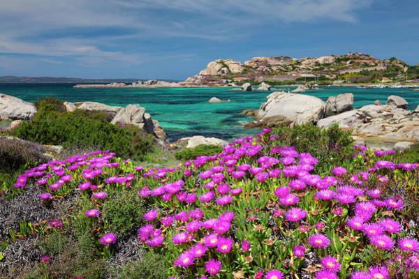 Sardinia Photograph - La Maddalena Island, Sardinia, Italy by Slow Images