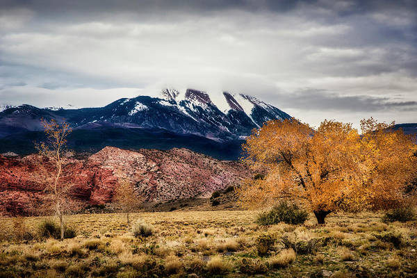 Photograph - La Sal Mountain Range by David Morefield