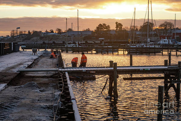 Photograph - Labor In The Harbor by Kim Lessel