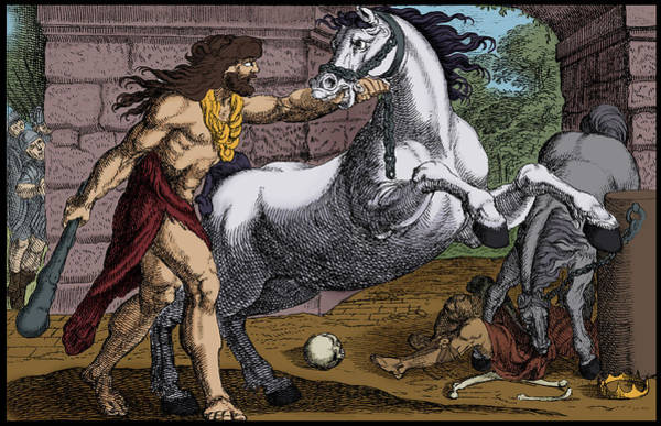 Wall Art - Photograph - Labors Of Hercules, Steal The Mares by Science Source