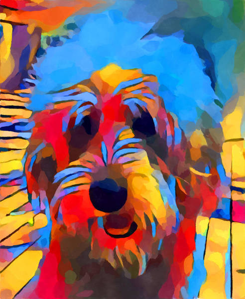 Wall Art - Painting - Labradoodle by Chris Butler