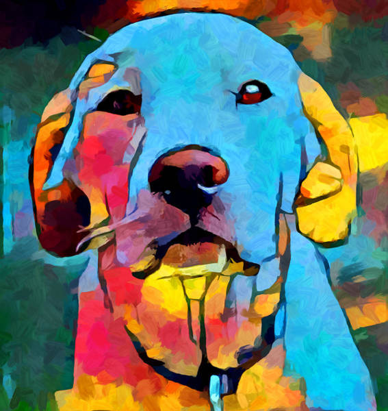 Wall Art - Painting - Labrador Retriever 4 by Chris Butler