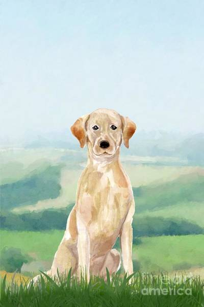 Pedigree Painting - Labrador Retriever by John Edwards