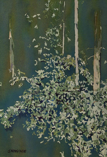 Painting - Lacy Edge by Jenny Armitage