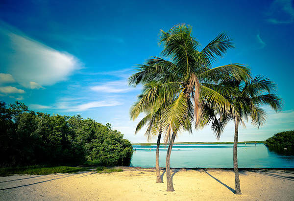 Old Florida Photograph - Lagoon Beach In The Florida Keys by Thepalmer