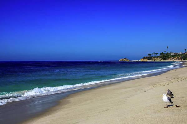 Photograph - Laguna Beach by Dawn Richards