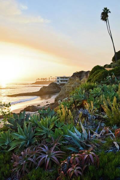 Photograph - Laguna Beach Heisler Park Portrait by Kyle Hanson