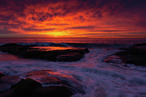 Photograph - Laguna Beach Landscape Sunset by Kyle Hanson