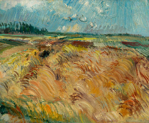 Barley Painting - Laihia Landscape by Eemu Myntti